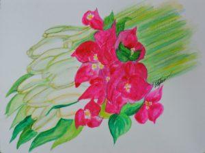 Fleur Tiare and Bouganvilla1
